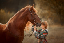 Beautiful Long-haired Blonde Young Woman In National Russian Style With Red Vladimir Draft Horse In Autumn Forest