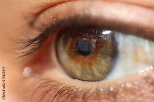 Obraz na plátně Detail Shot Of Human Eye With Lashes