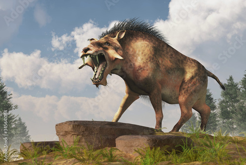 Fotografie, Obraz The Entelodon, or hell pig, is an extinct prehistoric pig or boar-like mammal that lived during the Eocene and Miocene, depicted in a landscape