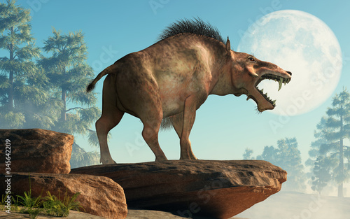 Fotografie, Tablou The Entelodon, or hell pig, is an extinct prehistoric pig or boar-like mammal that lived during the Eocene and Miocene, depicted in a landscape