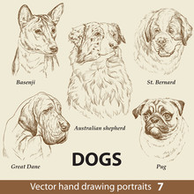 Set Of Hand Drawing Dogs 7