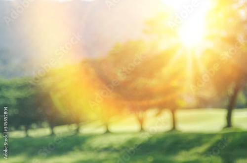 Obraz Blur nature green park with sun light abstract background. - fototapety do salonu