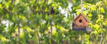 Colorful Birdhouse In Idyllic Garden: Wooden Birdhouse And Copy Space. Widescreen.