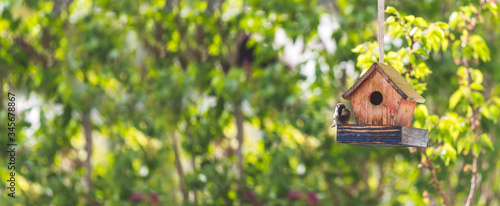 Fotografiet Colorful birdhouse in idyllic garden: Wooden birdhouse and copy space