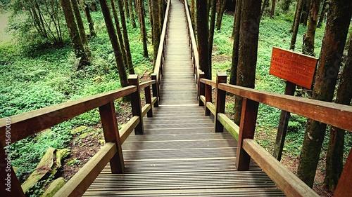 Canvas Print Empty Footbridge In Forest