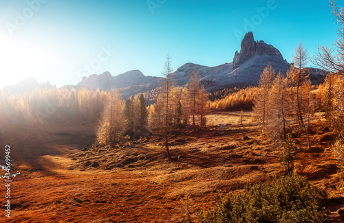 Wall mural - Awesome Alpine Highlands in sunny morning. Scenic image of fairy-tale woodland in sunlit. Wonderful picturesque Scene of Dolomites Alps mountains near Federa lake. Dolomite alp. Inaly. nature scenery