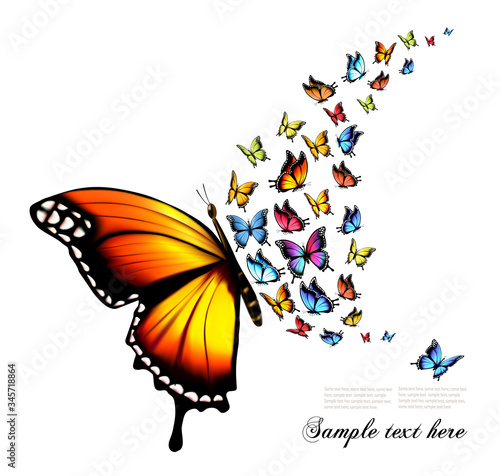 Fototapeta Beautiful nature background with colorful butterflies. Vector.