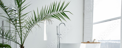Fototapeta White bathroom modern interior. Luxurious decor with plants, window, spa at home. Bathtub is filled with tap water, nobody obraz