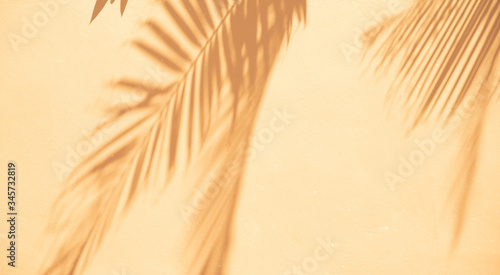 Abstract background of shadows palm leaves on a white wall. Top view of tropical leaf shadow on sand color background.