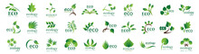 Collection Of Eco And Organic ...