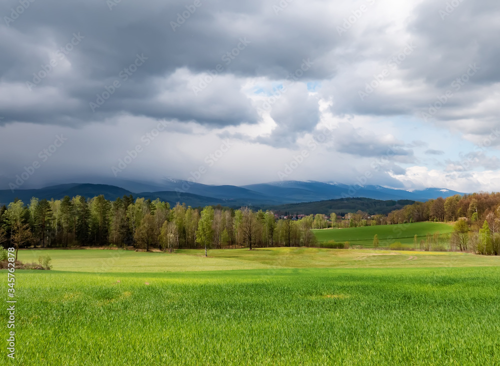 View on forest in mountains of Sudetes, Poland.