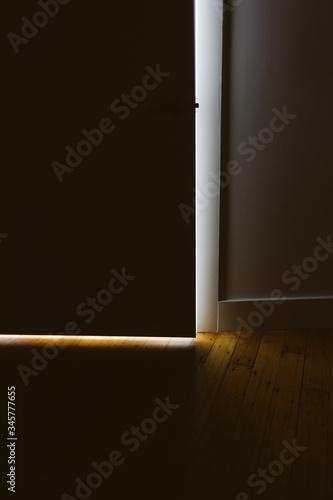Ajar Door In Domestic Room Canvas Print
