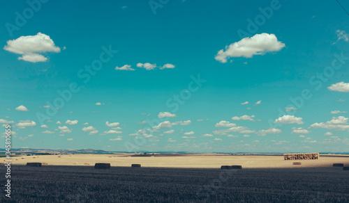 Canvastavla Haystacks In A Field
