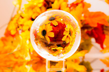 Autumn Leaves On A Glass