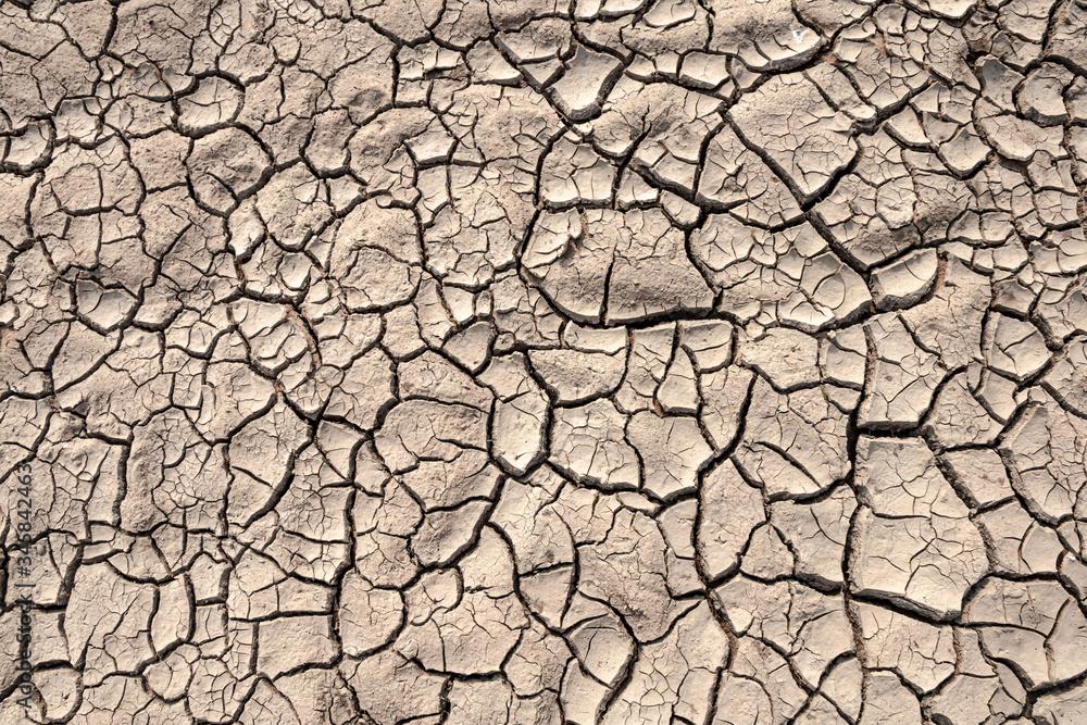 Fototapeta Ground cracks drought crisis environment background.