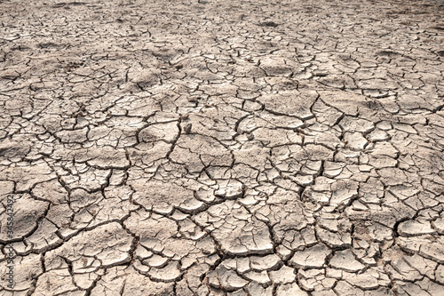 Fotografie, Obraz Ground cracks drought crisis environment background.