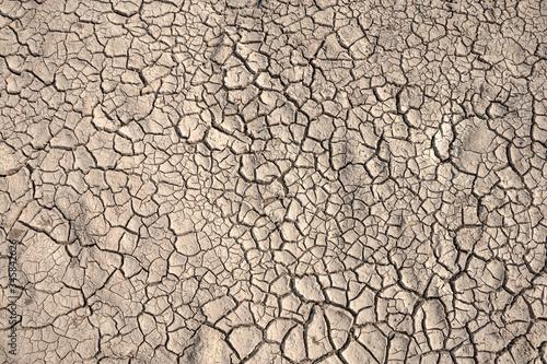 Vászonkép Ground cracks drought crisis environment background.