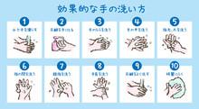 効果的な手の洗い方の...