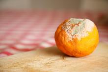 Arancio Con La Muffa Su Tavolo