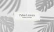 Vector set of palm leaves shadow overlay. Vector transparent shadow effect