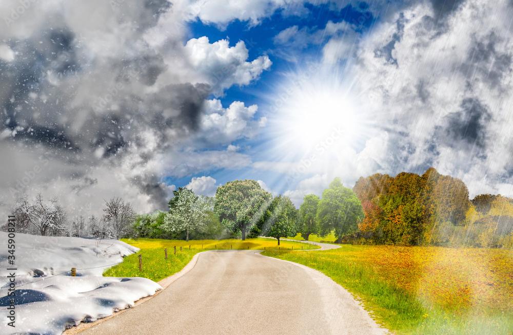 Fototapeta Four season landscape - one year cycle