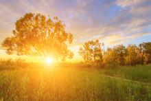 Scene Of Beautiful Sunset Or S...