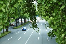 High Angle View Of Vehicle On Road With Leaves In Foreground