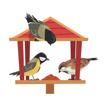 Winter Bird Feeder With Titmouses And Sparrows, Northern Birds Feeding By Seeds In Wooden Feeder Vector Illustration