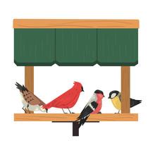 Winter Bird Feeder, Northern B...