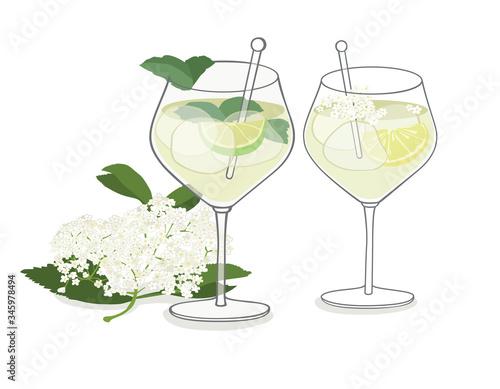 Fototapeta Elderflower Drink - isolated vector graphic