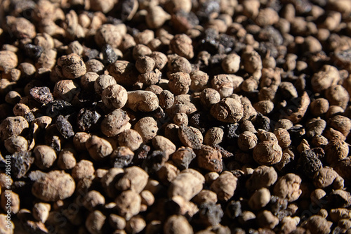 Expanded clay aggregate Canvas Print