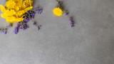 Fototapeta Kwiaty - Żółte i fioletowe kwiaty polne na betonowym tle z miejscem na opis