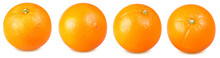 Isolated Orange Fruits. Collection Of Whole Oranges Isolated On White Background With Clipping Path