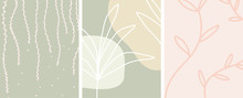 Abstract Botanical Art With Or...