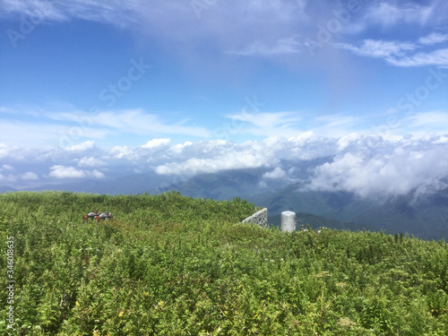 Lush landscape of Mount Ibuki Canvas Print