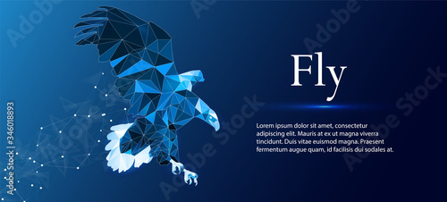 Eagle made of lines and rectangles, polygonal style on a blue background Tablou Canvas