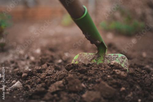 trabajo work herramientas jardín tierra tool plantas verde marrón agricultura hu Canvas Print