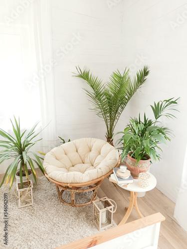Fotografie, Obraz House with cozy boho ethnic interior with plants.