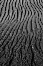 Sand Rippled, Black And White