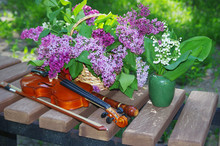 Violin With A Bow, A Pipe, A B...