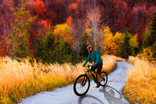 Cycling Man Riding On Bike At ...