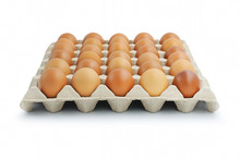 Brown Chicken Eggs In Pater Tray Isolated On White Background.