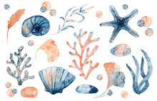 Watercolor Set Of Isolated Objects Drawing Blue And Pink Seashell, Starfish And Corals