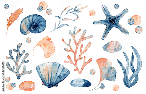 Obraz na plátně Watercolor set of isolated objects drawing blue and pink seashell, starfish and