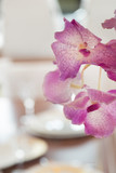 Orchid flowers. Aboard a luxury Yacht. Interior. Yachting. Boat. Shipbuilding Industry.