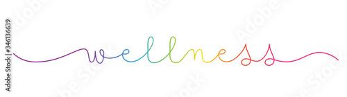 Fototapeta WELLNESS rainbow-colored vector monoline calligraphy banner with swashes obraz