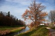 rzeka oława w mieście