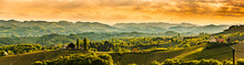 Panoramic View At Famous Wine ...