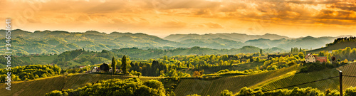 Fototapeta Panoramic view at famous wine street in south styria, Austrian destination, tuscany like vineyard hills