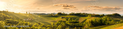 Fototapeta Panorama of vineyards hills in south Styria, Austria